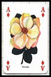 Classic Roses Playing Cards publ. by Heritage Toy & Game Co. Ltd., 1997 - Cat Ref 13197