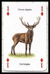 Animaux Sauvages publ. by Heritage Playing Card Company. - Cat Ref 13578