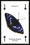 Papillons publ. by Heritage Playing Card Company. - Cat Ref 13579