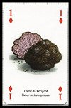 Champignons publ. by Heritage Playing Card Company - Cat Ref 13580