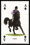 Pferde & Ponys publ. by Heritage Playing Card Company - Cat Ref 13581