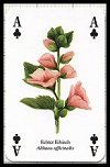 Kruter publ. by Heritage Playing Card Company - Cat Ref 13584