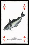 Fische publ. by Heritage Playing Card Company. - Cat Ref 13585