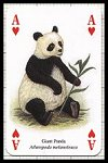 Asian Animals Playing Cards publ. by Heritage Playing Card Company, 2001 - Cat Ref 13610