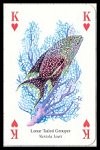 Ocean Life Playing Cards by Heritage - Cat Ref 13754