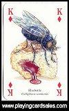 Insects & Spiders Playing Cards by Heritage - Cat Ref 13965