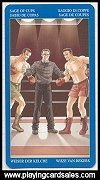Gay Tarot publ. by Lo Scarabeo, 2004 - Cat Ref 14065