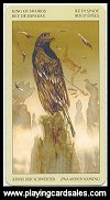 Native American Tarot publ. by Lo Scarabeo, 2004 - Cat Ref 14066